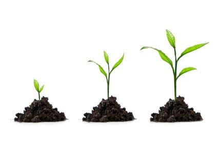 Spiritual Growth #2